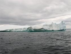 Iceberg Diving