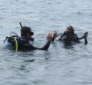 Rescue Divers