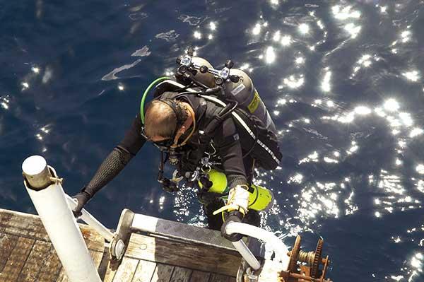 diver climbing ladder