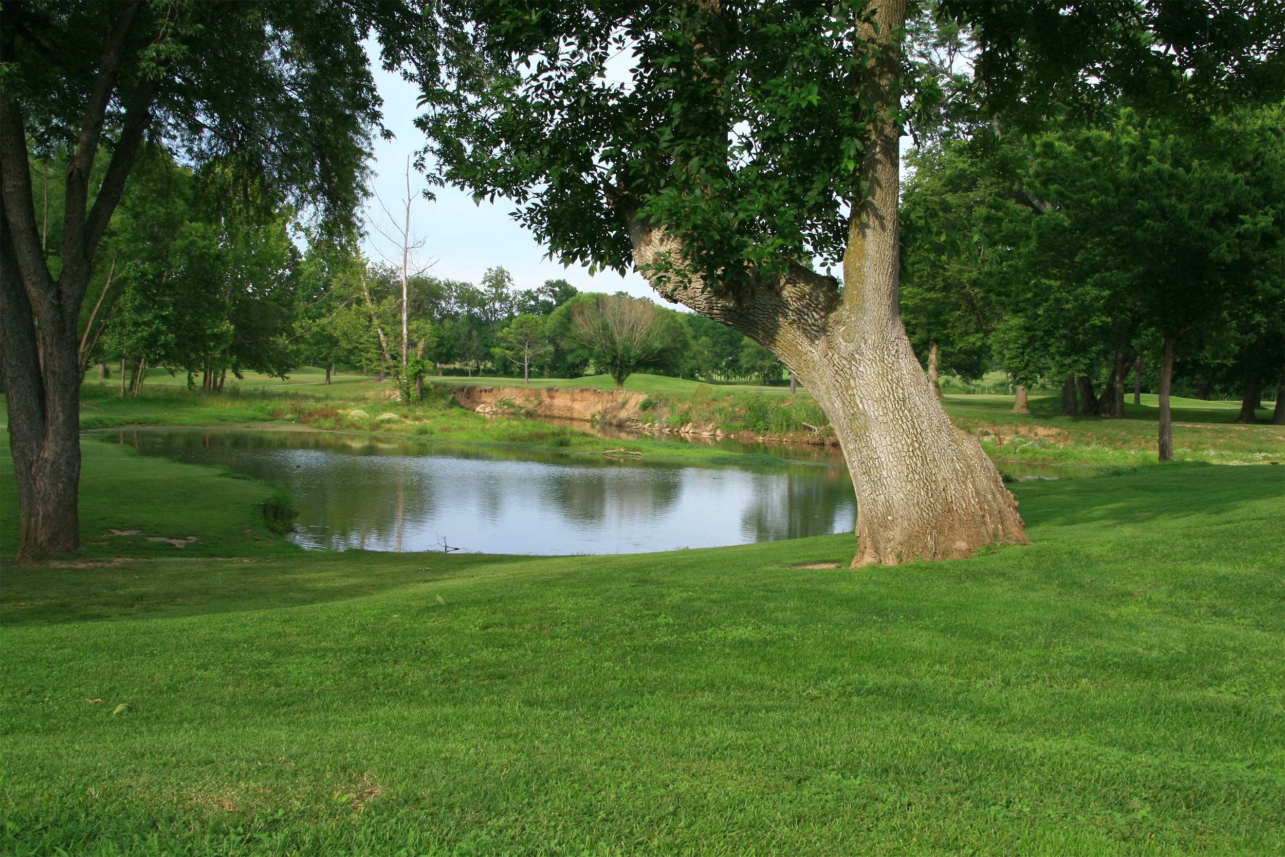 erdi golf course recovery