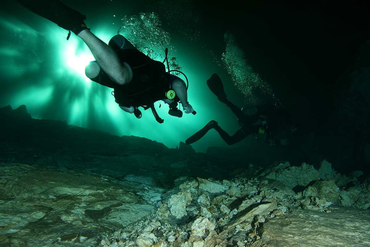 2 divers green