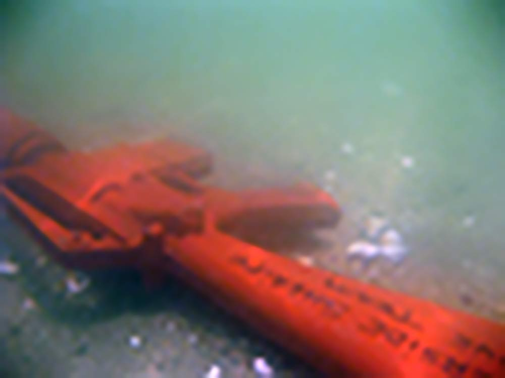 2 PS Divers recovering evidence