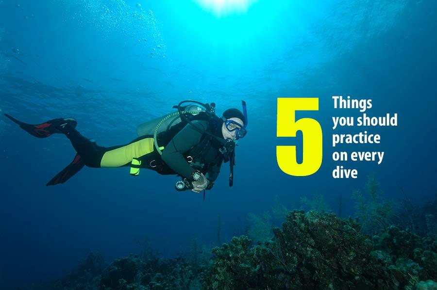 trimmed SDI diver
