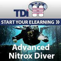TDI Diver