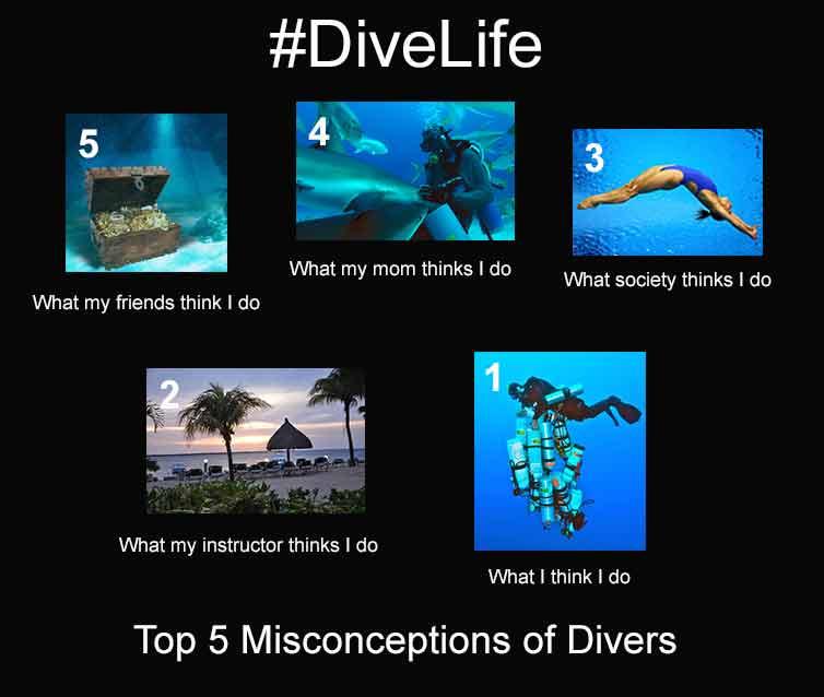 Top 5 scuba diving misconceptions