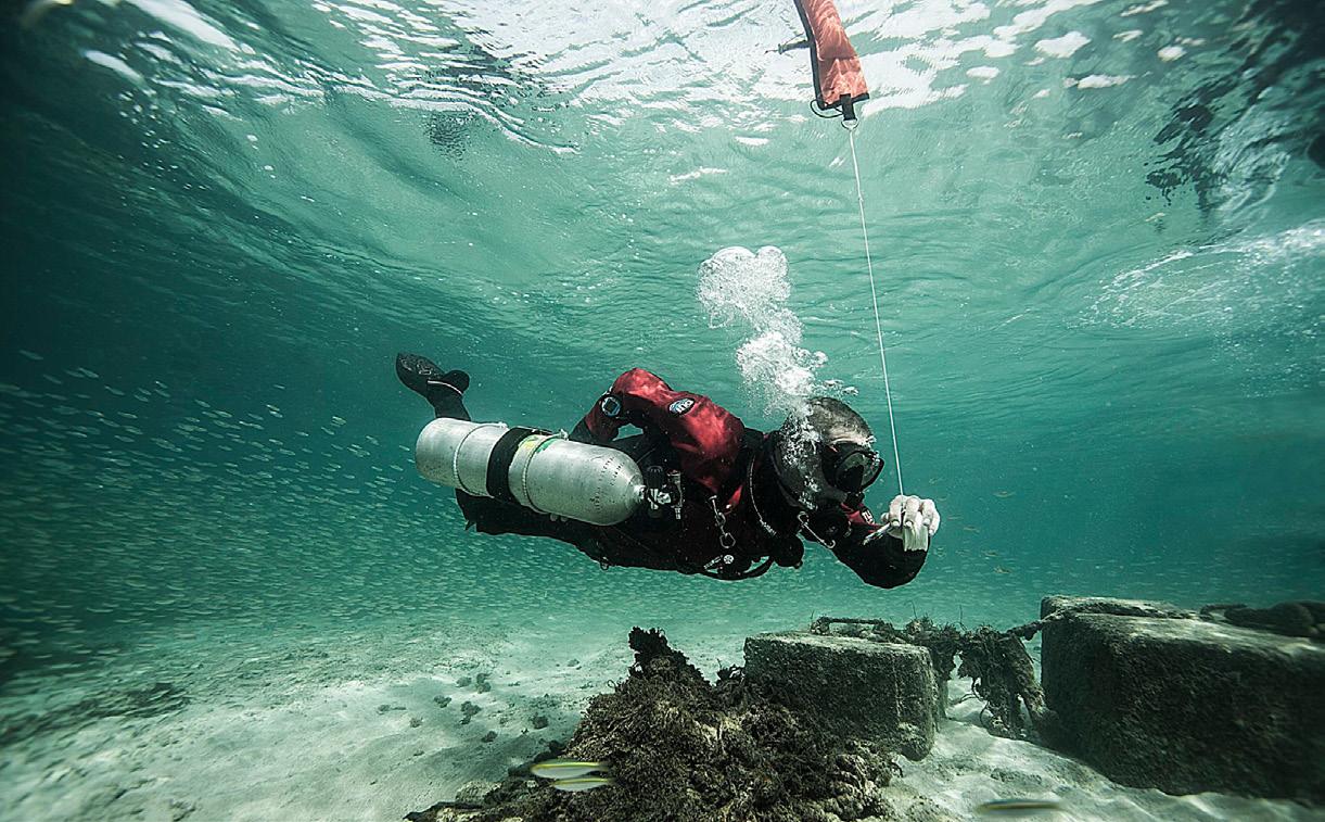 Sdi Dry Suit Diver Sdi Tdi Erdi