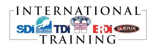 ERDI Logo