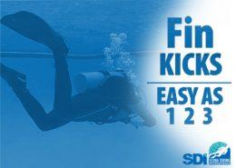 Fin Kicks