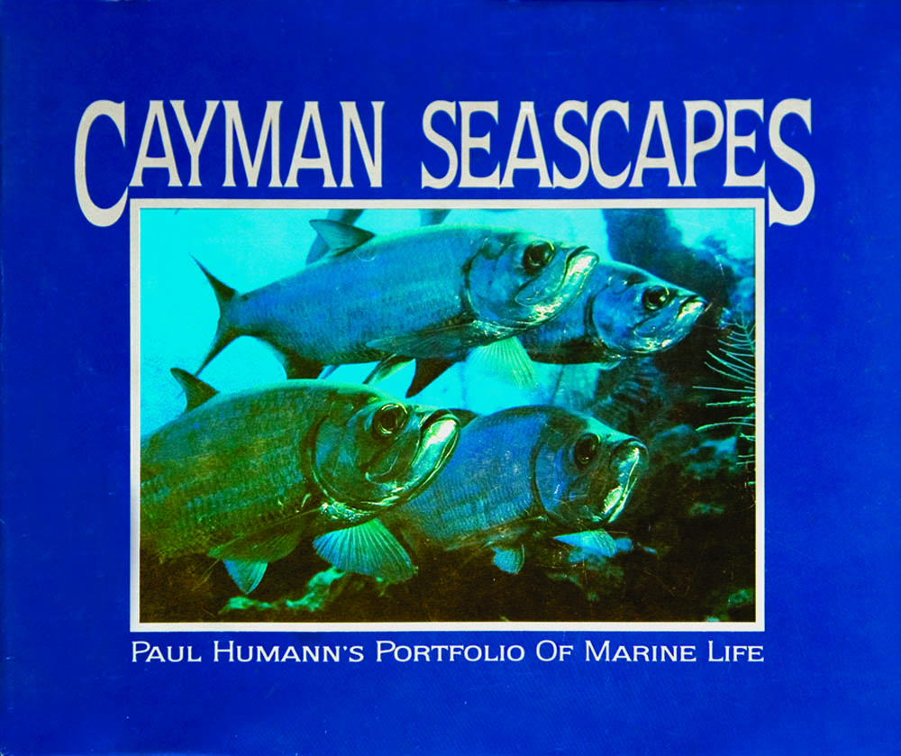 Cayman Seascapes