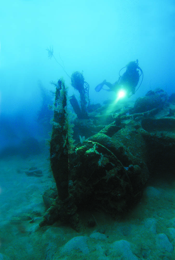 1943, WWII Japanese aircraft wreck in Solomon Islands, one of Gilliam's scores of magazine covers . His wife Gretchen is the model 2005