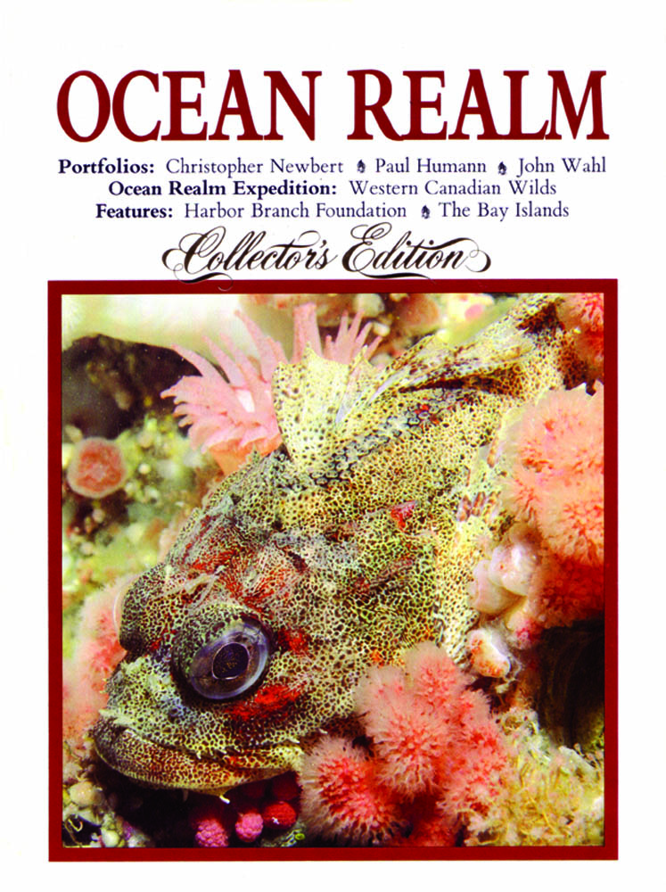 This issue of Ocean Realm was the first with Humann and Ned Deloch as editors