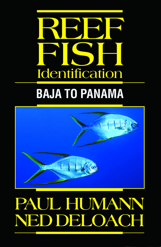 Fish Identification Baja to Panama