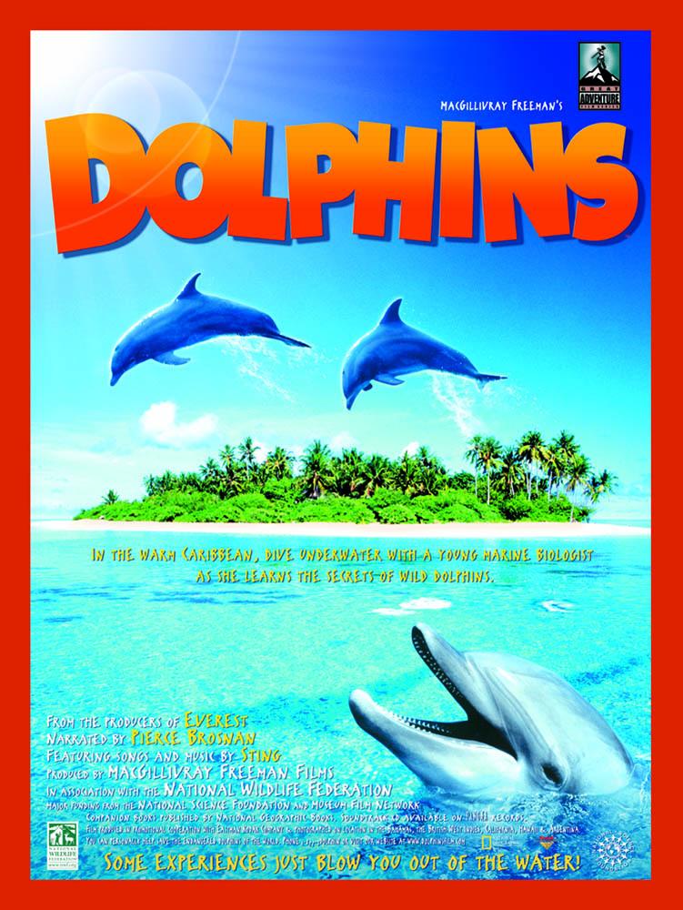 Dolphins Greg MacGillivray
