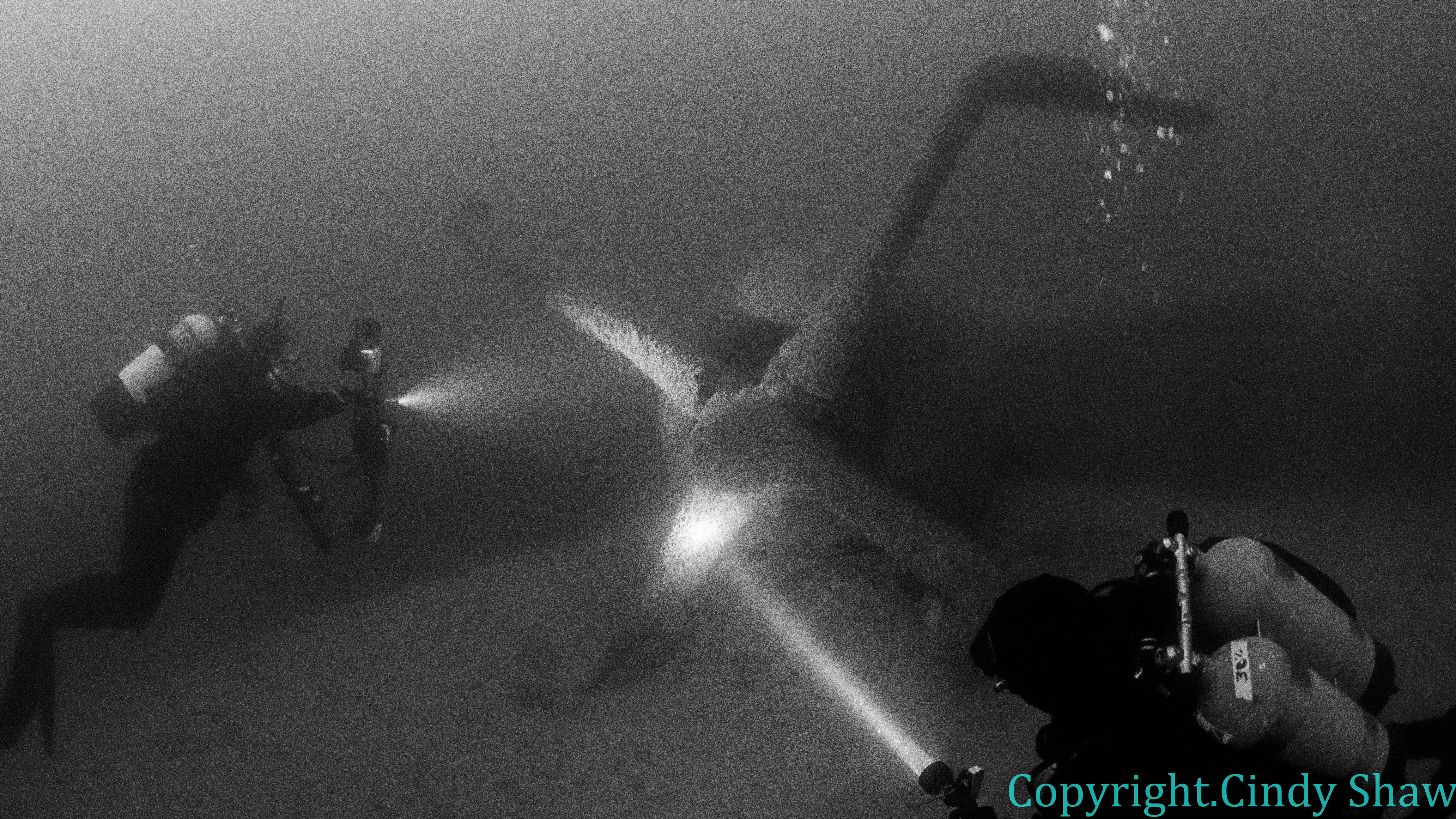 plane-wreck