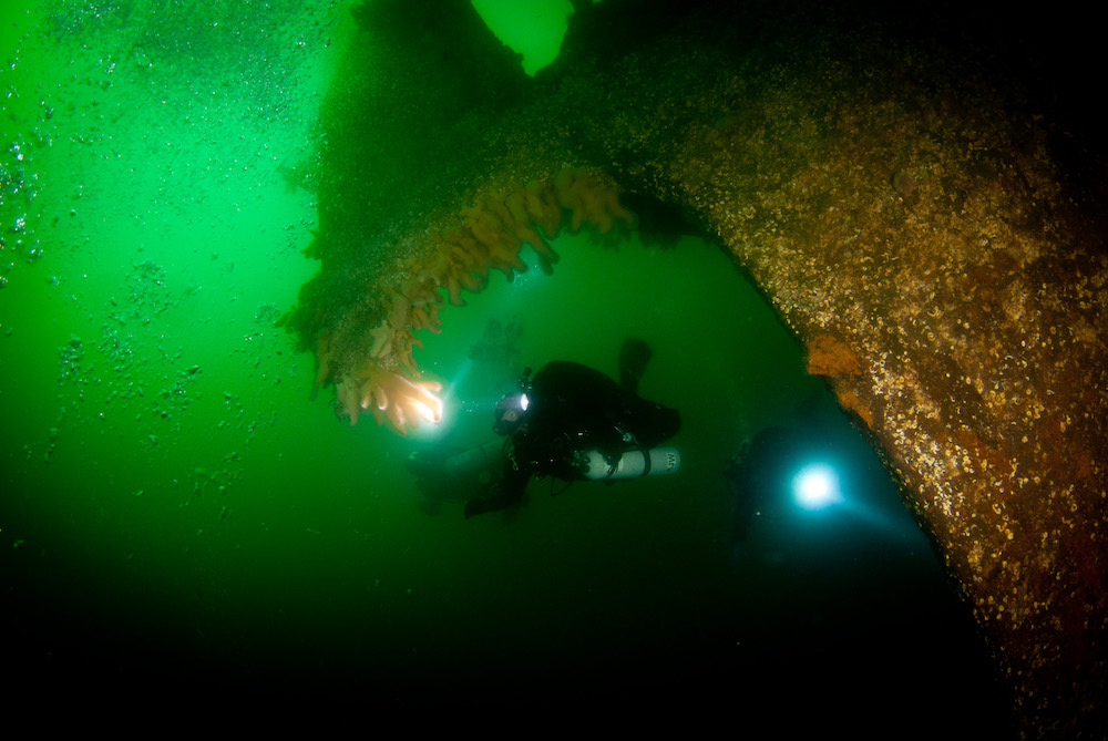 green wreck diver