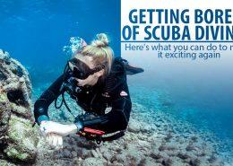 scuba-diving-reef