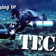 transitioning2tech