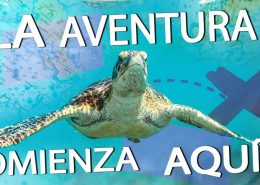 spanish la aventura bucea