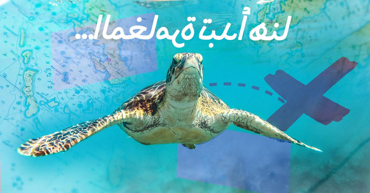 arabic scuba adventure
