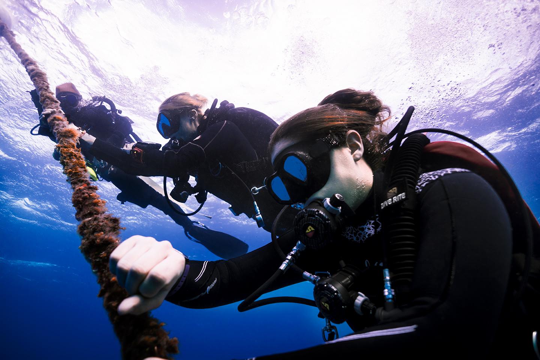 Scuba Divers on Line