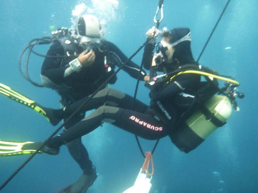 dives hanging on line