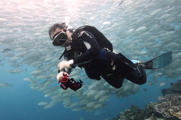 lewis kam wing tang diving