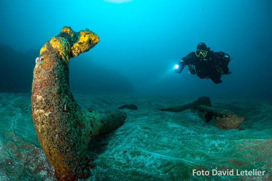 scuba diver shining light on to coral photo taken by David Letelier