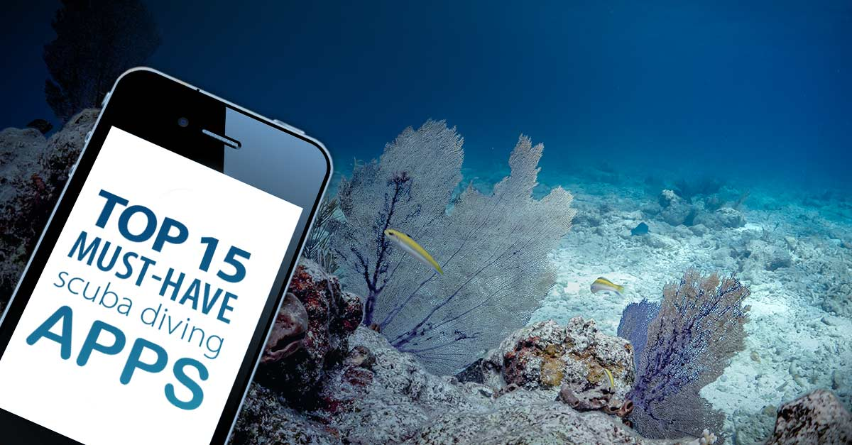 Scuba online dating bästa gratis dating app på Android
