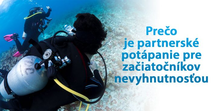 Why Scuba Diving with a Buddy Is Necessary for Beginners Slovak