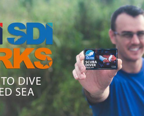TDI SDI Perks Program in the Red Sea