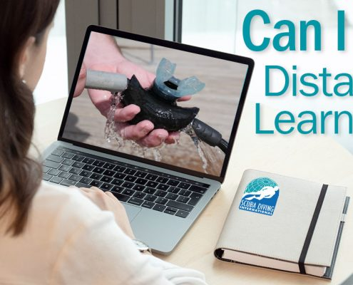 Can I Use Distance Learning
