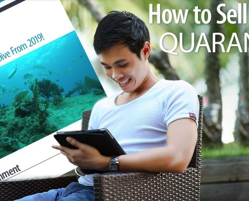 How To Sell During Quarantine