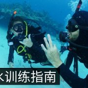 Guidelines for Reopening Dive Training Chinese