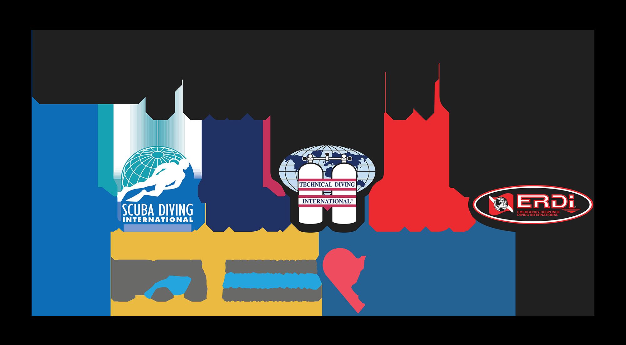 International Training All Logos Transparent