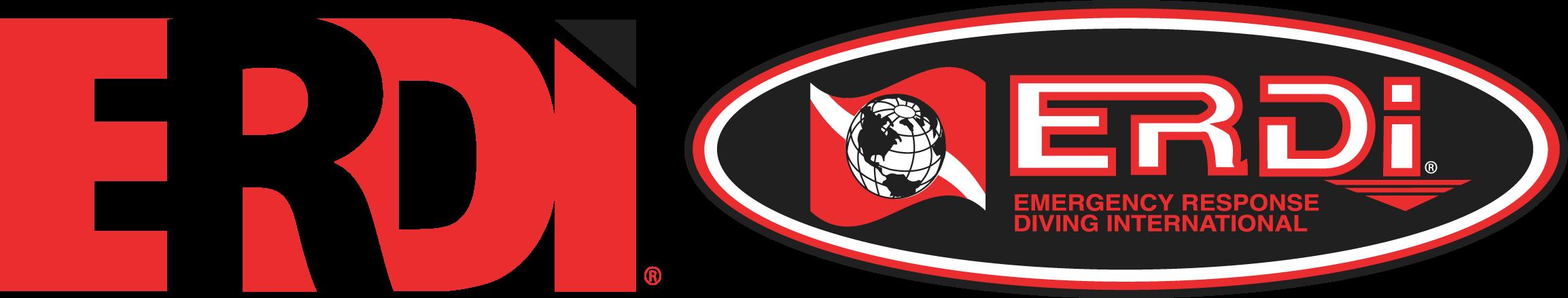 ERDI Combo Logo Color Large