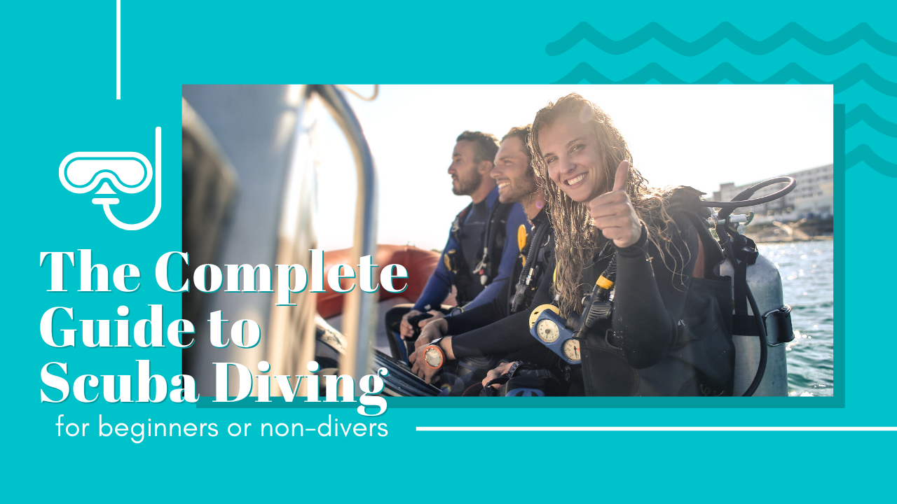 complete guide to scuba diving