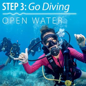 OpenwaterDiver