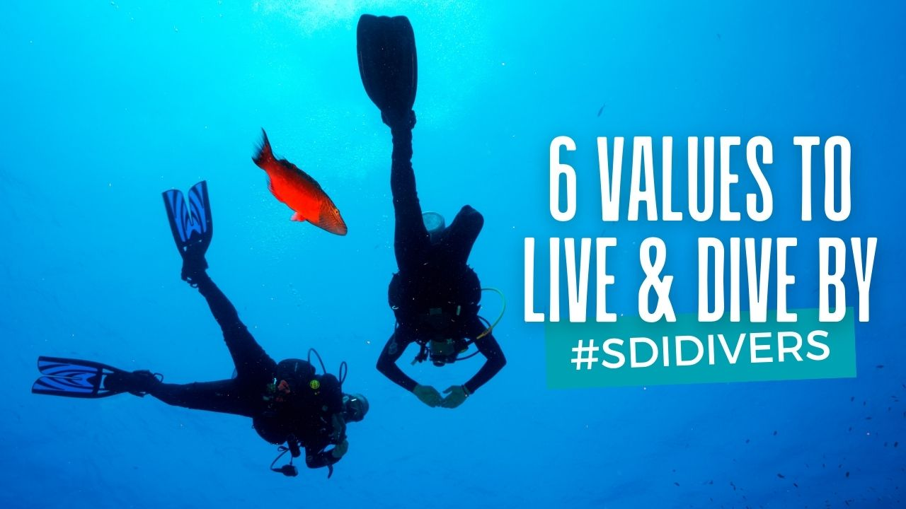 Six values to live and dive by