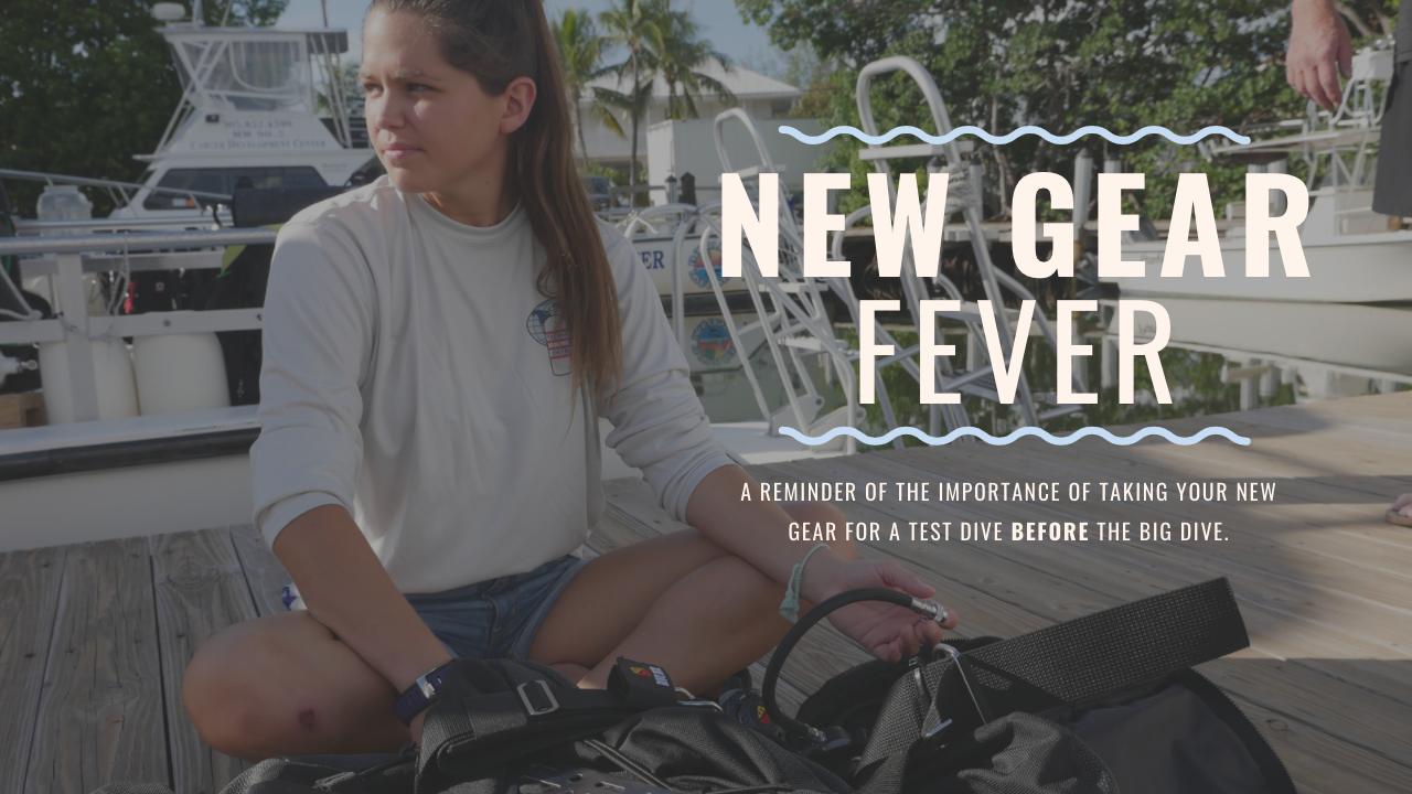 New Gear Fever