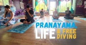 Pranayama Life and Freediving